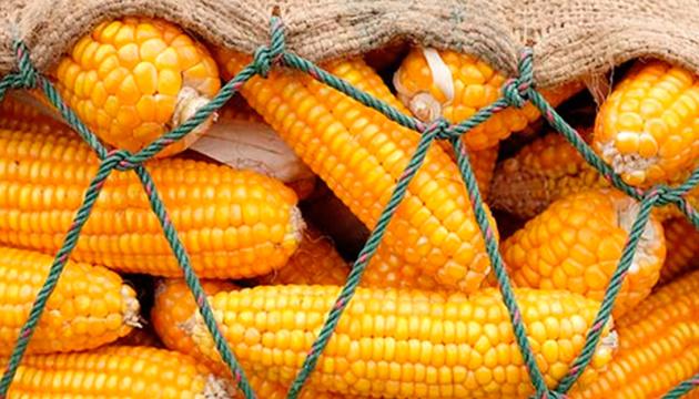 Ціни на українську кукурудзу знижуються через коронавірус