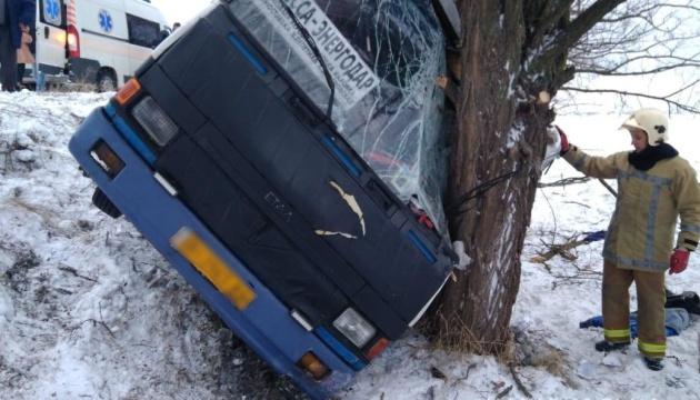 Из-за непогоды на Херсонщине рейсовый автобус съехал в кювет, есть раненые