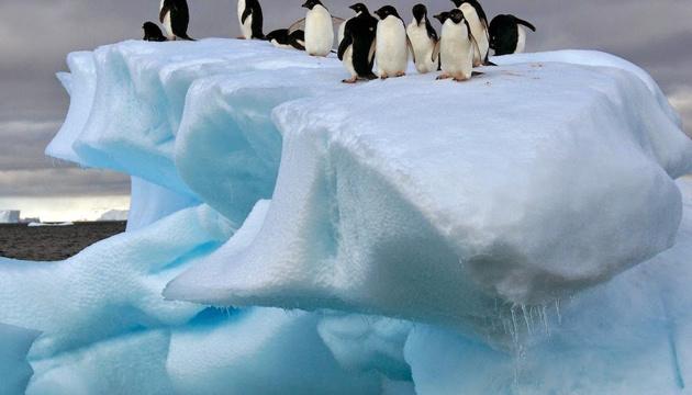 Українські вчені прогнозуватимуть зміни клімату в Антарктиді та Арктиці