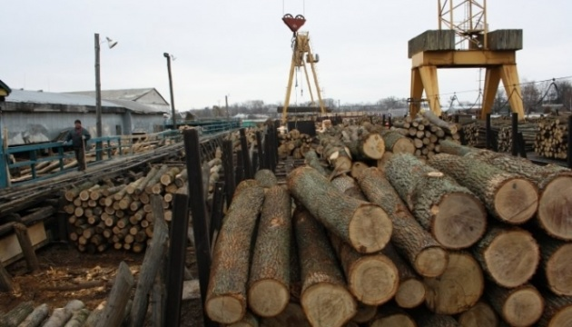 Заборона експорту лісу: Євросоюз запросив консультації з Україною