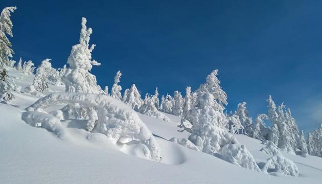 У Карпатах оселилися химерні снігові скульптури