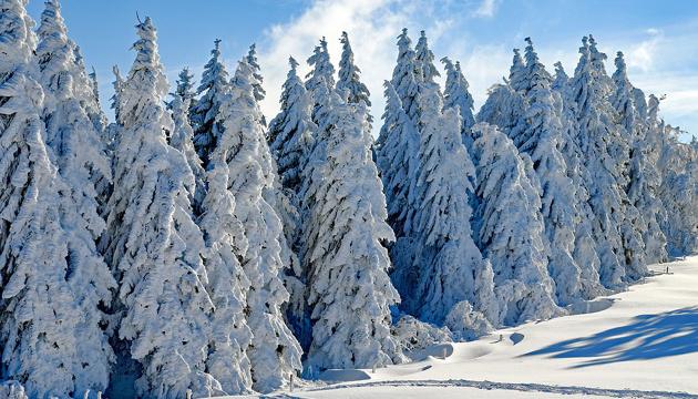 23 січня: народний календар і астровісник