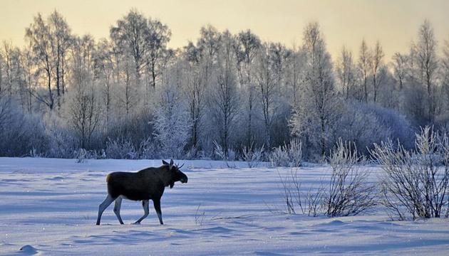 27 января: народный календарь и астровестник