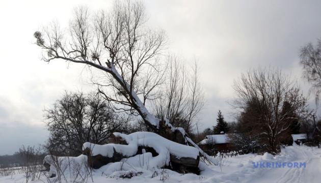 Зима не жартує: українцям потепління обіцяють лише з 30 січня