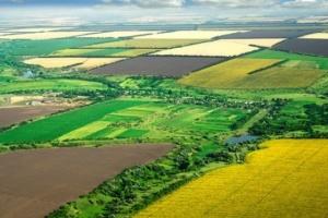Правительство передаст государственные сельхозземли в собственность 141 тергромаде