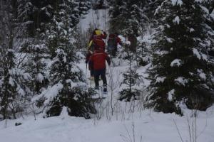 На Закарпатье нашли пропавшую туристку — на поиски поднимали вертолет