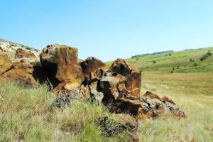 Территорию возле села Удачное Донецкой области объявили ландшафтным заказником