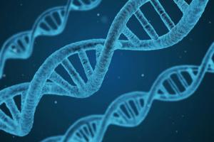 Японія вперше дозволила препарат генної терапії