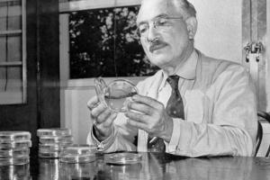 Українсько-американський вчений 73 роки тому представив світу ліки від туберкульозу
