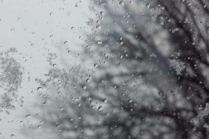 В Нидерландах выпал первый снег
