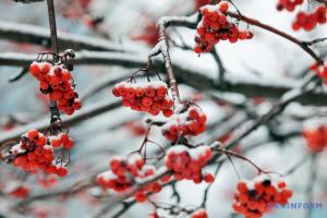 На выходные прогнозируют дождь со снегом, местами - до °13 мороза