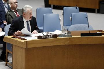 Ucrania denuncia ante el Consejo de Seguridad de la ONU la emisión de los pasaportes rusos en el Donbás
