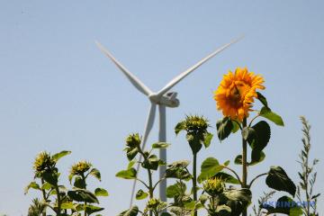Ucrania entre cinco países con la mayor cantidad de parques eólicos