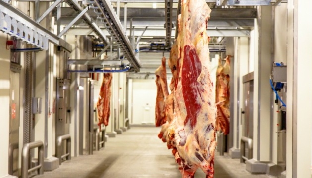 ЕС расследует скандал с экспортом мяса больных животных из Польши