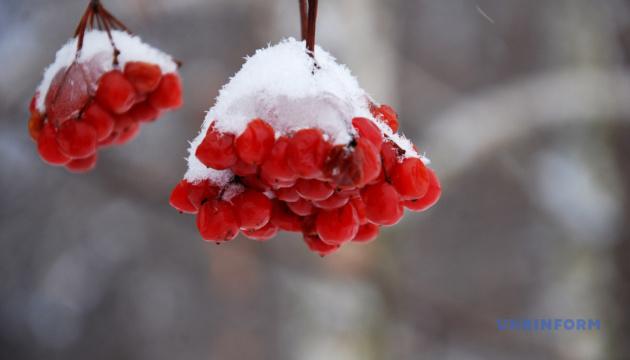 Дождь со снегом и сильный ветер: где непогода