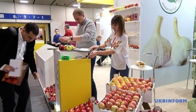 Украина успешно переходит на новые рынки в экспорте яблок - эксперт