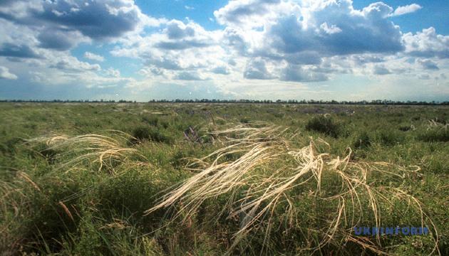 Уряд підтримав створення нових об'єктів природно-заповідного фонду