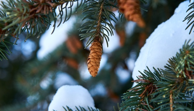 Ukraine expects worsening weather conditions tomorrow