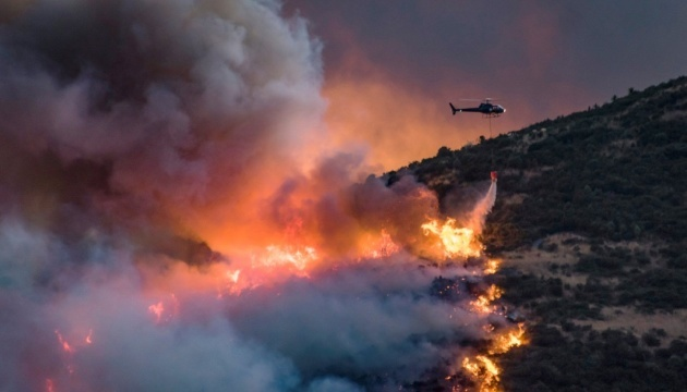 У Новій Зеландії продовжує вирувати лісова пожежа