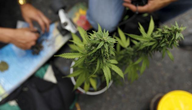 На сербсько-болгарському кордоні вилучили понад тонну марихуани