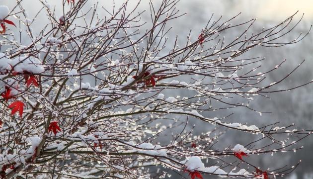 На вихідні в Україні - мороз і сильний вітер