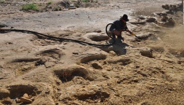 В Австралії знайшли дорогу динозаврів, якій 95 мільйонів років