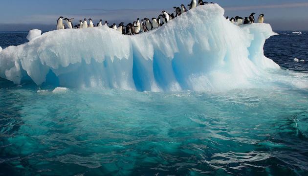 Возле станции «Академик Вернадский» откололся край ледника