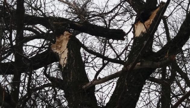 Сильний вітер зірвав дах у готелі на Тернопільщині