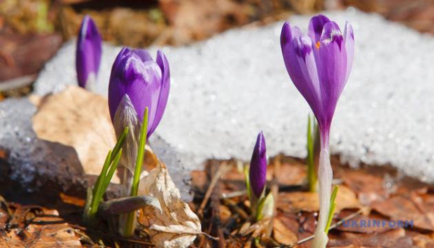 От 10° мороза до 16° тепла: чего ждать украинцам в ближайшие дни