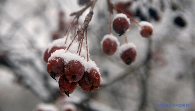 Українцям прогнозують ще до 10° морозу