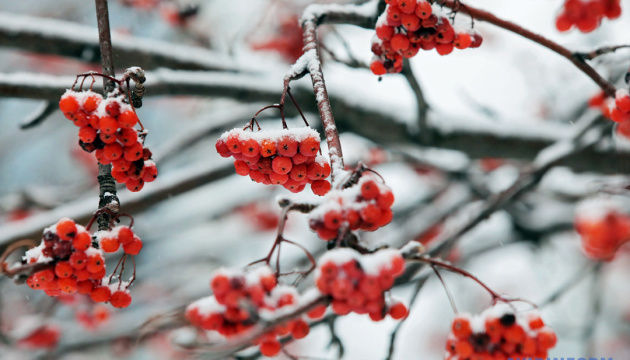 На выходные прогнозируют дождь со снегом, местами - до 13° мороза