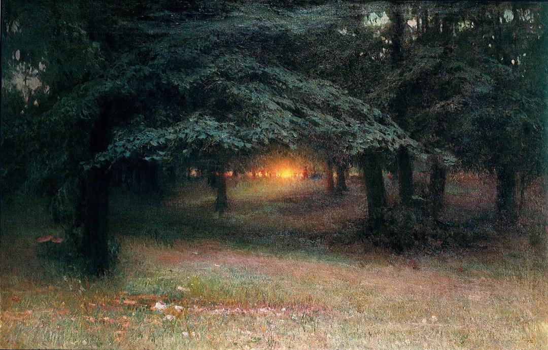 Захід сонця в лісі. 1904 р.