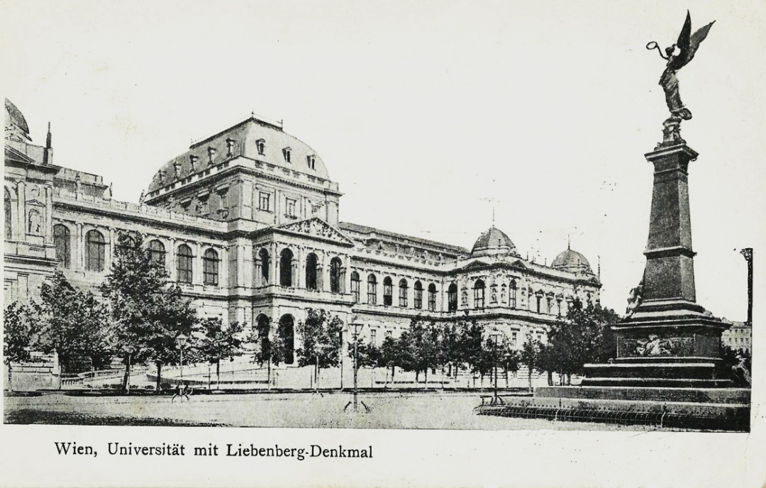 14-Віденський університет, початок XX століття 1