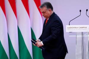 Орбан осудил евродепутата от Венгрии за «гей-оргию» в Брюсселе