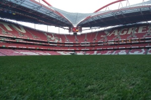 La selección de Ucrania prueba el césped del estadio en Lisboa (Vídeo)