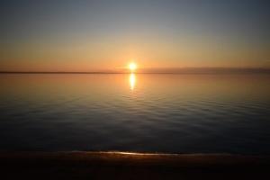 Мармурове море може бути втрачене через забруднення та рекордне потепління - еколог