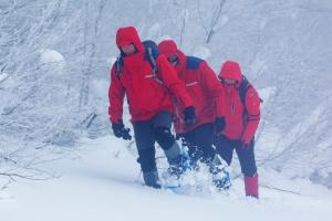 Рятувальники знайшли туристів з Києва, які заблукали в Карпатах