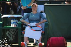 Свитолина вернется на теннисный корт в конце апреля
