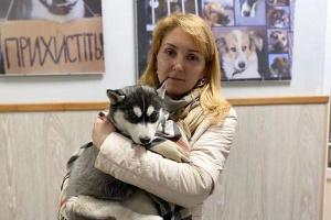 Во Львове спасли щенка хаски благодаря донорской крови
