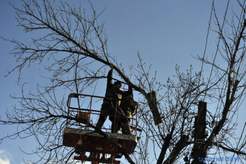 Almost 130 towns and villages in Ukraine left without electricity due to bad weather