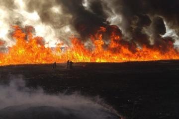 У Києві за 12 днів зафіксували 144 пожежі в екосистемах