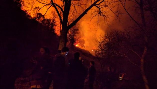 В Іспанії спалахнули близько 100 лісових пожеж