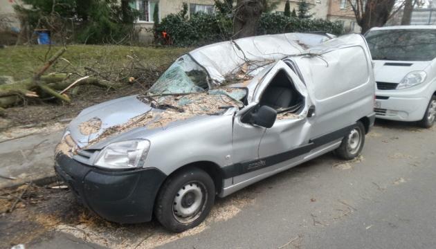 Зірвані дахи та повалені дерева: над Польщею пронісся буревій