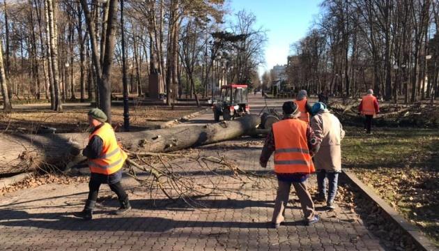 Повалені дерева та пошкоджені дахи: як на Прикарпатті
