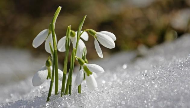 Зима еще напомнит о себе: на следующей неделе прогнозируют до 14° мороза