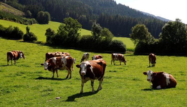 В Австрії для туристів створять