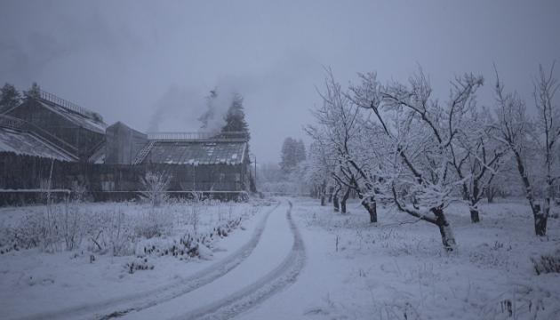 """""""Історія зимового саду"""" представить Україну на кінофестивалі в США"""
