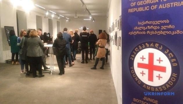 Молодые послы Грузии призвали в Вене к прекращению российской оккупации