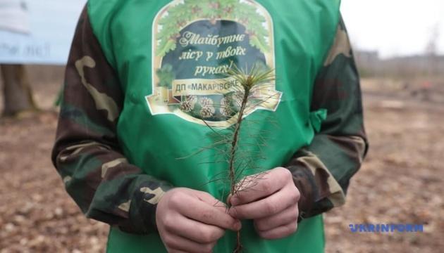 """В Україні стартувала акція """"Майбутнє лісу у твоїх руках"""""""