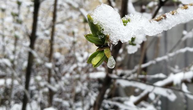Мокрий сніг та 18° тепла: синоптики дали прогноз до 1 квітня